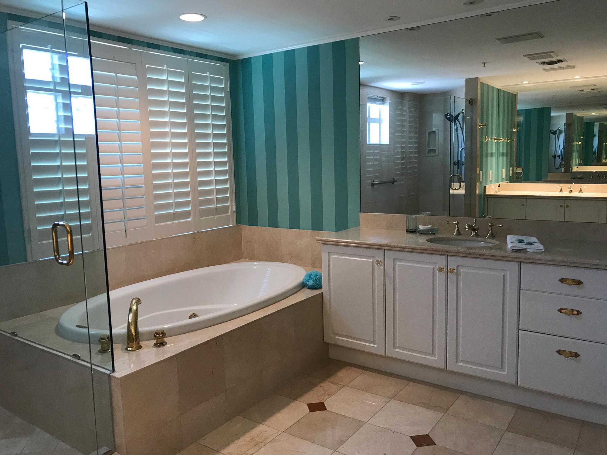 Master Bathroom Tub View Before